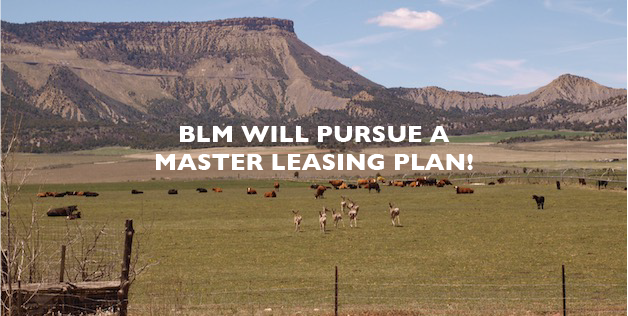 BLM MLP image
