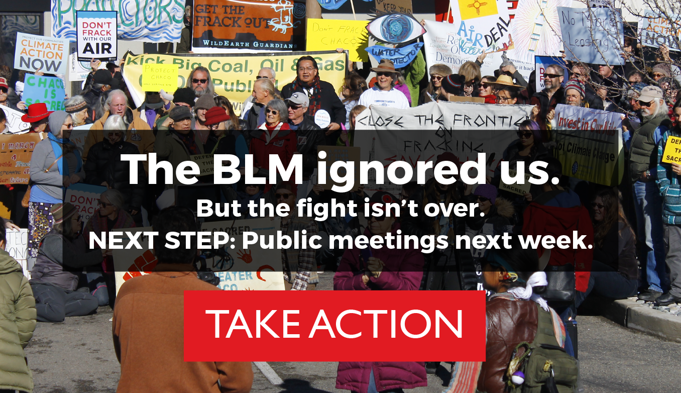 BLM Ignored Us Graphic