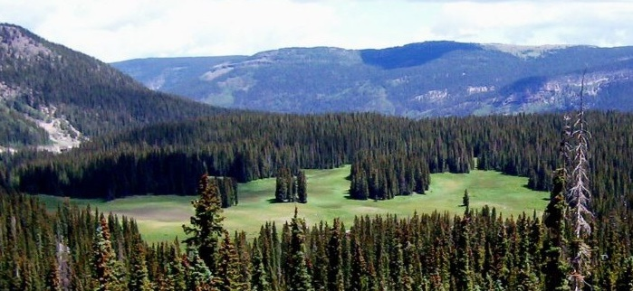 Picture of development location at Wolf Creek